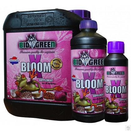 X-Bloom