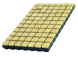 Rockwool Trays