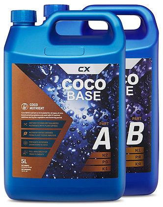 Coco Base A&B