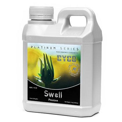 Cyco Swell