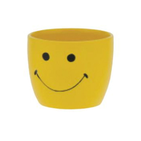smiley face pot
