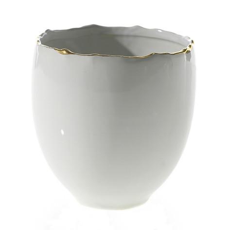 evelyn pot