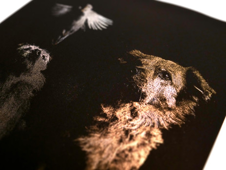 print in gold and silver foil