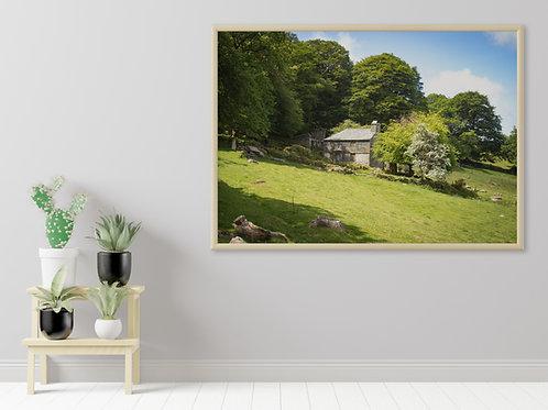 Deserted Cottage on Bodmin Moor Print