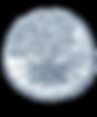 6face64e67a27a387d3ee84bfb5bf41a_sci-ill