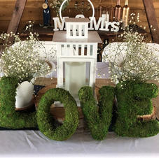 Love Moss Letters