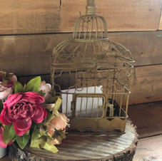 Card Rustic Bird Cage