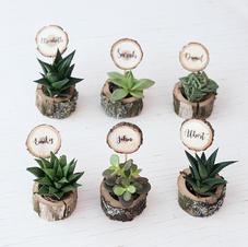 Mini vase/candle holders