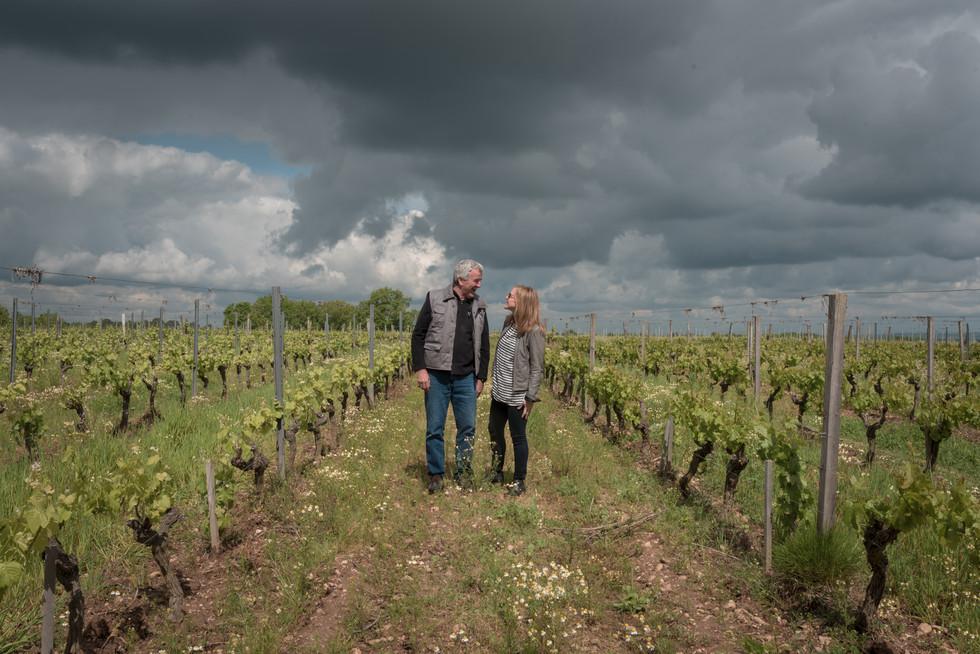 Chateau Plaisance Laine & Marc in vineya