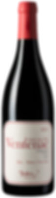 Grand Coeur Wines - Maison Ventenac - Jules - Reserve