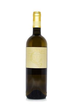 Grand Coeur Wines - Collestefano - Verdicchio