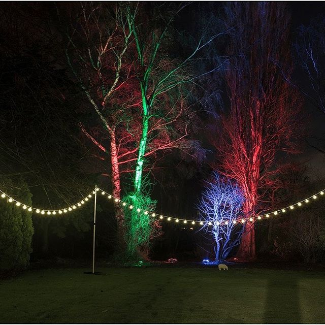 Looking for outdoor uplighting or festoon to add that little extra to your event we have a wide rang