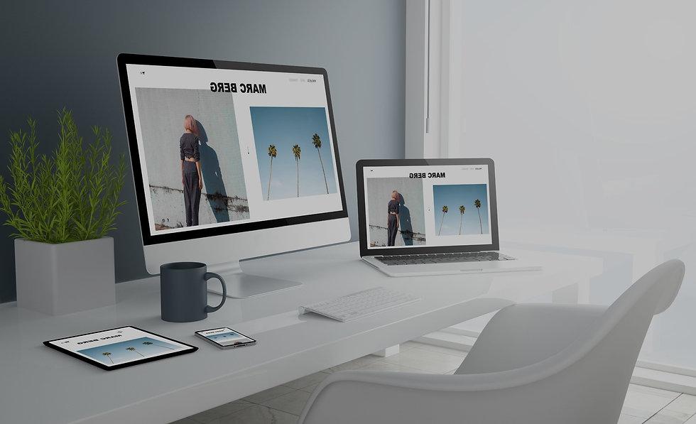 web para artistas acción escénica.jpg