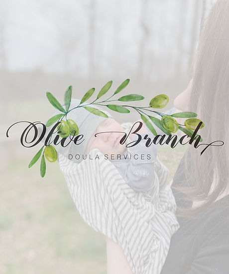 olivebranch.jpeg