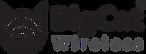 BCW-Logo-V17.png