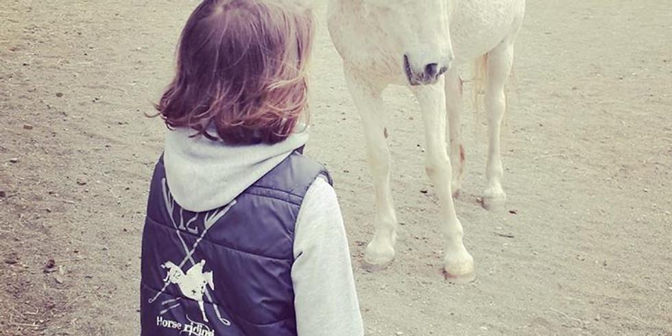 Murmurez aux oreilles des chevaux