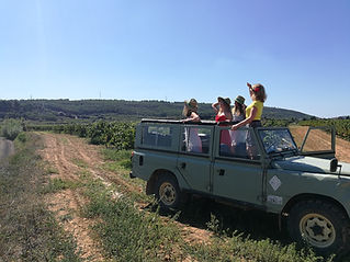 land rover wine-tour.jpg