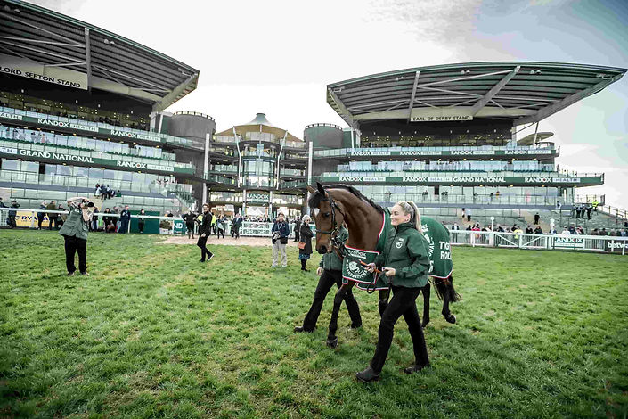 Festival Zone Enclosure Ticket for Aintree Grand National