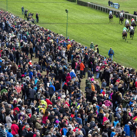 Horse Racing Looking to Bounce Back