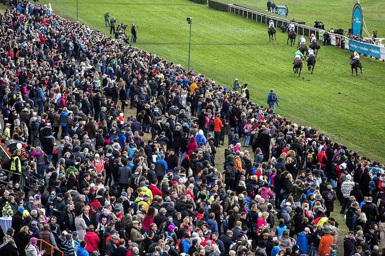 Velka Pardubicka horse racing