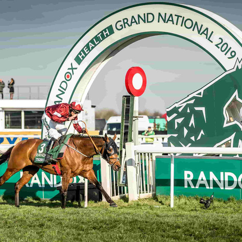 How Tiger Roll Became a Grand National Legend