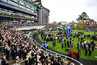 Champions Day Email.jpg