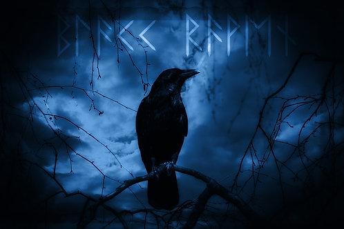 Preconjure - Loki's Dark Moon Raven (V.)