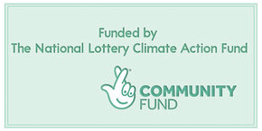 Lottery logo banner.png