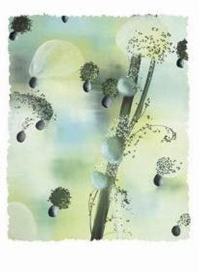 YAMOU Abderrahim - Multiple d'art #3