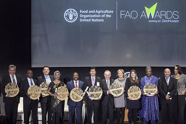 pptArt FAO Awards.jpg