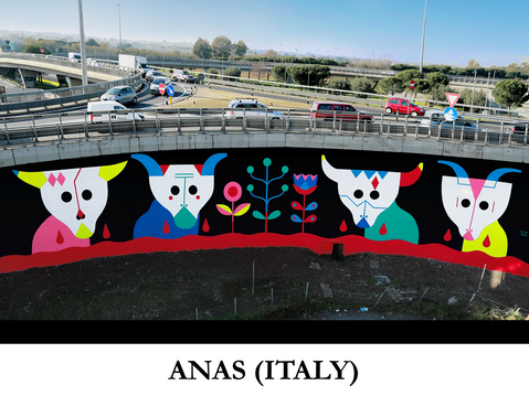 ANAS (Italy)