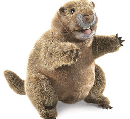 Stuffed animal marmot