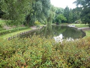 bassin en campagne