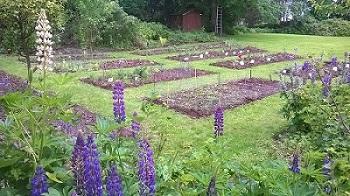 entretien de jardin1