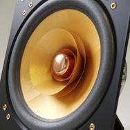 Cube Audio F10 neo fullrange driver
