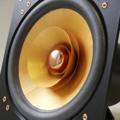 Cube Audio F10fullrange driver