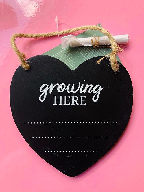 Garden Slate Heart (2)