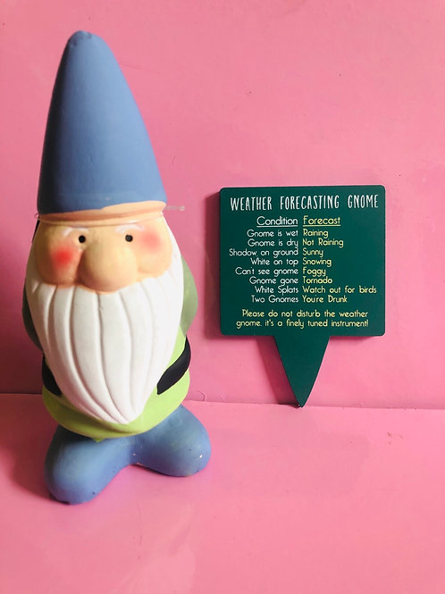 Weather Forecasting Gnome (blue hat)