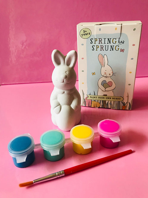 Paint a Bunny Kit