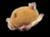 Keimende Kartoffel.png