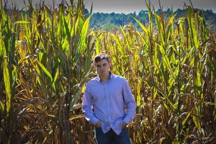in a field of corn