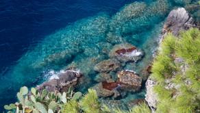 Var - Île de Porquerolles (Août 2018)