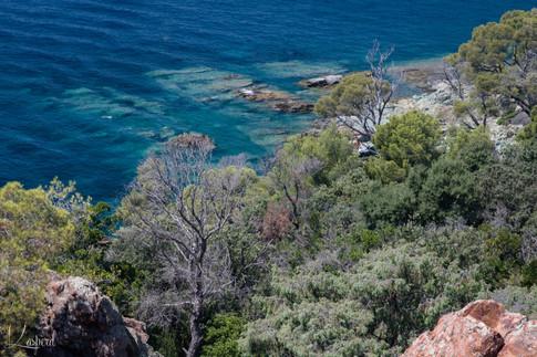 Sentier littoral Cap Dramont