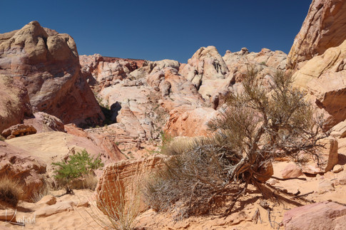 White Domes Trail