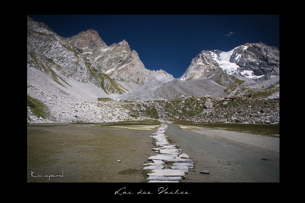 Lac des vaches Pralognan la Vanoise Montagne Savoie Alpes