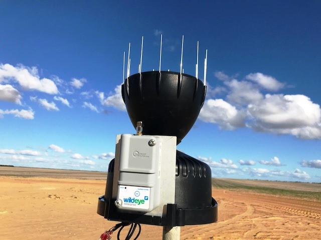 Wildeye automatic rain gauge