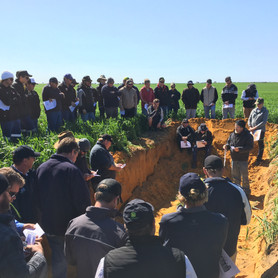 YFIG Spring Field Day Hits The Mark