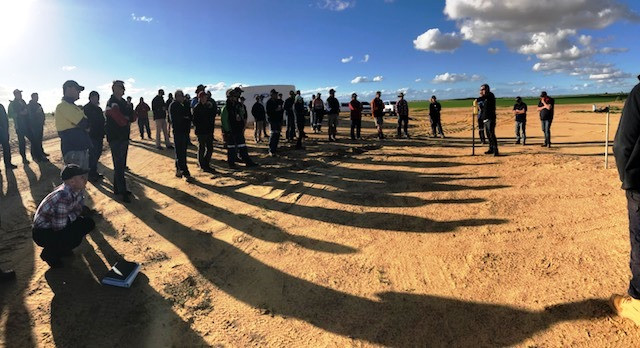 YFIG Crop Establishment Field Walk June 2018