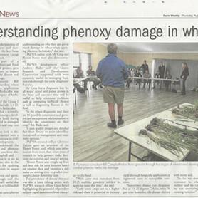 Understanding Phenoxy Damage in Wheat