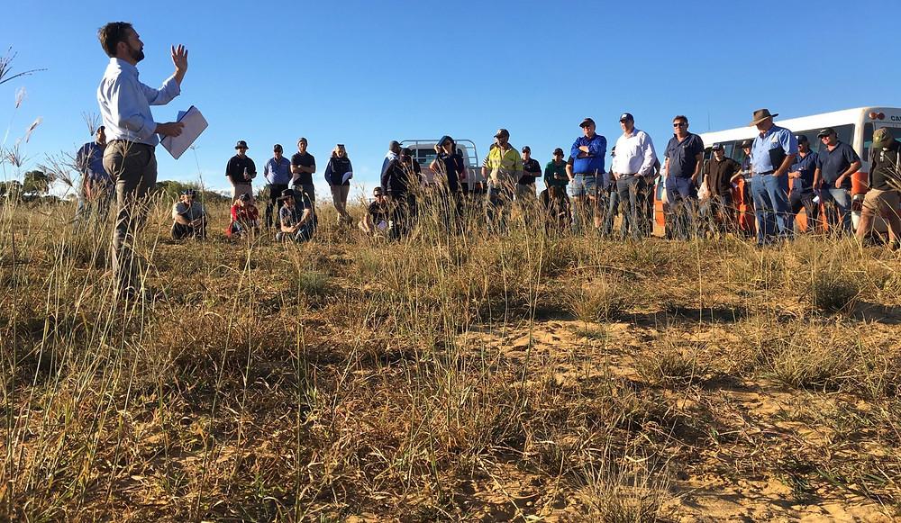 2017 Field Day sparked interest in perennials